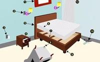 5 nguyên tắc giúp ngăn ngừa bọ rệp trong nhà