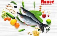 Đã đến lúc gia đình bạn nên sử dụng dầu ăn 100% từ Cá