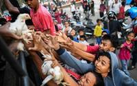 Hình ảnh tang thương chồng chất sau trận thảm họa kép ở Indonesia khiến 1.374 người chết