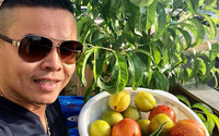 Khu vườn rộng 3.500m² ngập tràn hoa quả của ông chủ tiệm nail người Việt thành đạt trên đất Mỹ