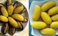 Công dụng chữa bệnh tuyệt vời của chuối sáp luộc mà nhiều người không biết