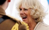 Sau 13 năm vượt bão dư luận lấy Thái tử Charles, bà Camilla