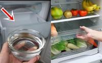 Trước khi ngủ đặt bát nước vào tủ lạnh, sáng hôm sau mẹ trẻ vỡ òa khi thấy thành quả
