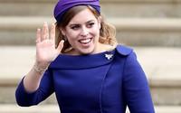 Công chúa Anh phải lòng triệu phú có một đời vợ và một đứa con