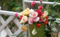Người đàn ông Hà Thành trút bỏ những muộn phiền bằng cách cắm những bình hoa đẹp tự nhiên như một phần cuộc sống