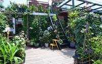 Bà mẹ đơn thân cùng con gái 5 tuổi dành trọn hai năm để biến sân thượng thành khu vườn đẹp như cổ tích