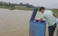 8X Ninh Bình bỏ việc ngân hàng về quê nuôi cá, kiếm 500 triệu/năm