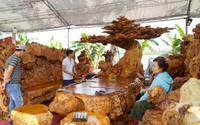 Từ gốc cây mục ở đáy sông hóa bộ bàn ghế 3,8 tỷ đồng