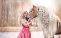 """Chú ngựa trở thành """"sao"""" trên mạng xã hội nhờ có bờm đẹp"""