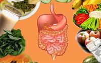 Thực hiện các bước này bạn không lo bệnh tiêu hóa ngày Tết
