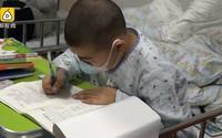 Cậu bé ung thư Trung Quốc làm bài thi trên giường bệnh