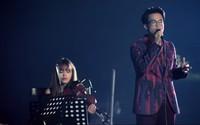 Hà Anh Tuấn cover 'Tình em ngọn nến' được ca ngợi