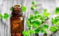 Lợi ích tuyệt vời của các loại tinh dầu với sức khỏe và làm đẹp