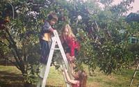 Cuộc sống yên bình của một gia đình nhỏ bên khu vườn cây sai trĩu quả