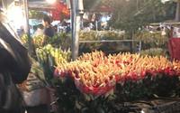 Tắc đường, chợ hoa Quảng Bá