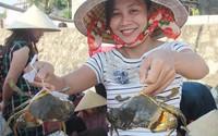 Dong thuyền săn cua tự nhiên thu tiền triệu/ngày