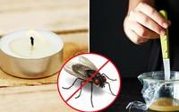 Cách đuổi ruồi
