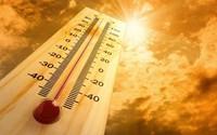 Bệnh Herpes sinh dục gia tăng khi nóng nực