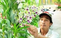 Làm đủ nghề không khá, trồng vài trăm m2 hoa lan, thu 200 trăm triệu/năm