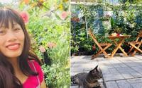 """Vườn hồng rực rỡ của cô gái 8X từng bị gọi là """"mụ khùng"""" ở Tây Ninh"""