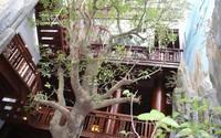 """Cận cảnh căn nhà 5 tầng làm hoàn toàn bằng gỗ quý """"độc nhất vô nhị"""" ở Hà Tĩnh"""
