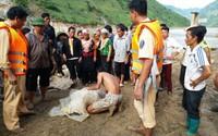 Vụ lật thuyền gỗ tự chế chở 10 người trên sông Đà: Tìm thấy thi thể con gái chủ đò