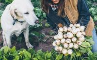 Trang trại toàn rau xanh, cây trái mát lành của cặp vợ chồng blogger ẩm thực thích