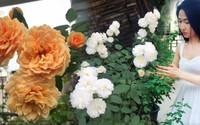 Ngắm không rời mắt sân thượng hoa hồng thi nhau đua sắc của bà mẹ trẻ Sài Gòn