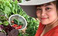 Vườn rau trên sân thượng bạt ngàn rau quả mùa hè của bà mẹ 3 con ở Hải Phòng