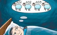 """Dù là """"thánh ngủ"""" nhưng cứ đến chỗ lạ là bạn lại trằn trọc, khó ngủ lạ thường - vì sao thế?"""