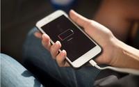 Apple bất ngờ bị khởi kiện ở Việt Nam