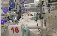 Chồng mất sớm, mẹ đơn thân nghẹn ngào nhìn con hôn mê vì sốt xuất huyết nặng