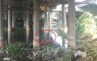 Cần thủ vứt cần câu bỏ chạy khi phát hiện thi thể cô gái nổi trên sông Sài Gòn