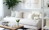 Tư vấn thiết kế nhà cấp 4 cho gia đình 3 người ở với đầy đủ công năng và ánh sáng tự nhiên hoàn hảo