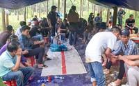 Khởi tố 12 bị can đánh bạc ở rừng cao su