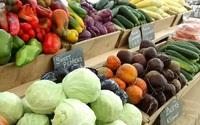 Khu vườn xanh tươi với hơn 200 loại rau của người đàn ông quyết tâm trồng vì sức khỏe gia đình