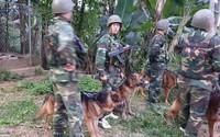 Vụ nhóm tội phạm ma túy đấu súng với công an ở Hà Tĩnh: Thu giữ gần 10kg ma túy, tiếp tục truy bắt một tên bỏ trốn