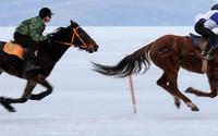 """""""Lác mắt"""" với màn đua ngựa trên băng ở Nga"""