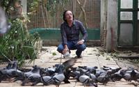 Nhà vườn gần 10.000 mét vuông ở ngoại thành của Giang Còi