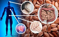 8 điều có thể xảy ra với cơ thể nếu bạn đều đặn ăn hạt lanh mỗi ngày