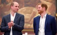'Rạn nứt nghiêm trọng' giữa William và Harry qua ngôn ngữ cơ thể