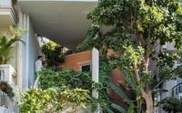 Ngôi nhà ống tiện nghi lại xanh mát như mang rừng vào nhà của gia đình 3 thế hệ giữa Sài Gòn hoa lệ
