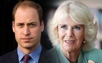 Hoàng tử William đến tận bây giờ vẫn không chấp nhận mẹ kế, nguyên nhân từ một cuộc gặp bí mật sau khi Công nương Diana qua đời