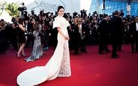 Vì sao Lý Nhã Kỳ không dự LHP Cannes như Ngọc Trinh năm nay?