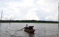 Huyện Krông Pắk (tỉnh Đắk Lắk): Người dân bất chấp tính mạng chèo thuyền qua dòng nước dữ