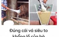 Xôn xao hình ảnh Bà Tân Vlog dùng 1 chiếc muôi vừa cho lợn ăn, vừa nấu những món 'siêu to khổng lồ'