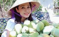 Việt Trinh thu hàng trăm kg trái cây từ nhà vườn 2.500 m2