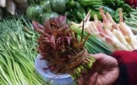 Loại rau đầy rẫy ở nông thôn nhưng vào siêu thị bán với giá hơn 400.000 đồng/nửa kg