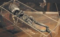 Hé lộ thân phận thực sự về sinh vật lạ nghi là 'em bé ngoài hành tinh mang lời nguyền chết chóc từng gây rúng động cách đây 23 năm