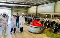 Vinamilk tham gia xây dựng vùng chăn nuôi bò sữa an toàn dịch bệnh theo quy định tổ chức thú y thế giới
